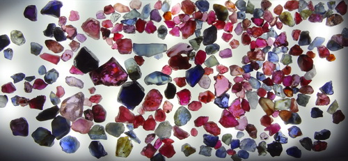 Buy Real Ruby and Sapphire Rough from Pailin